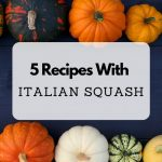 5 Recipes With Italian Squash