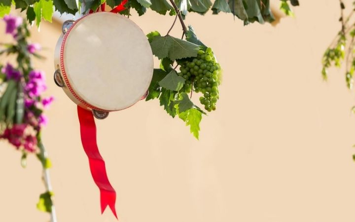 Italian tambourine with grapevine for Tarantella - The Proud Italian
