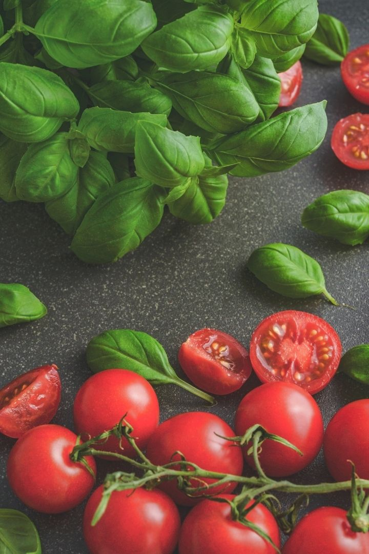 Tomatoes and Basil leafs, How to Grow Basil Indoors - The Proud Italian