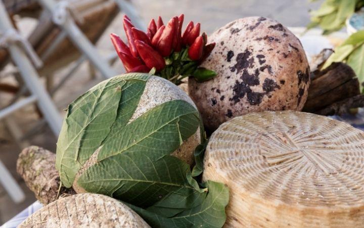 Pecorino cheese, Casu Marzu - The Sardinian Cheese with Maggots - The Proud Italian