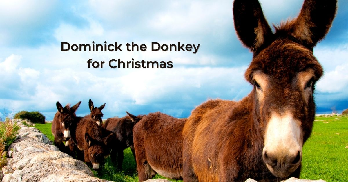 Dominick the Donkey for Christmas