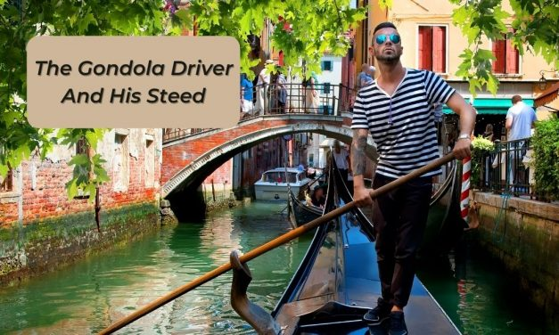 The Gondola Driver And His Steed
