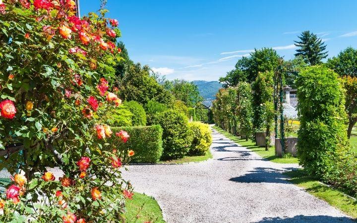 Villa Taranto Gardens, The Top 10 Italian Gardens to Visit on your Next Trip - The Proud Italian