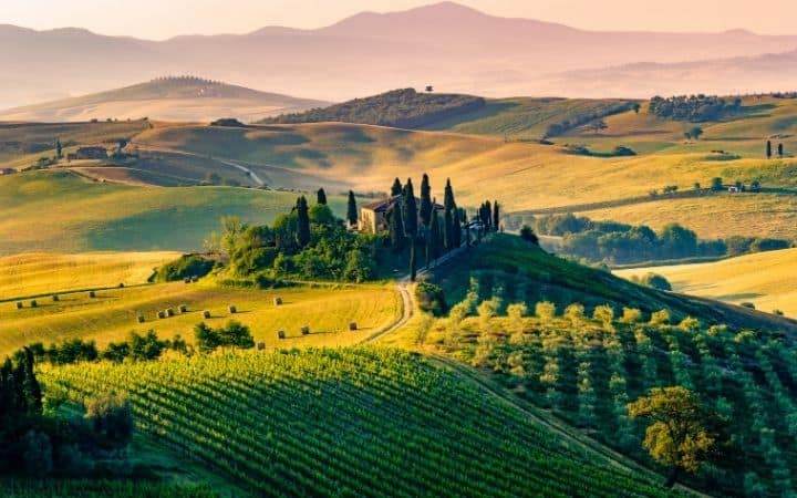 Landscape of Tuscany with vineyard and house - The Proud Italian