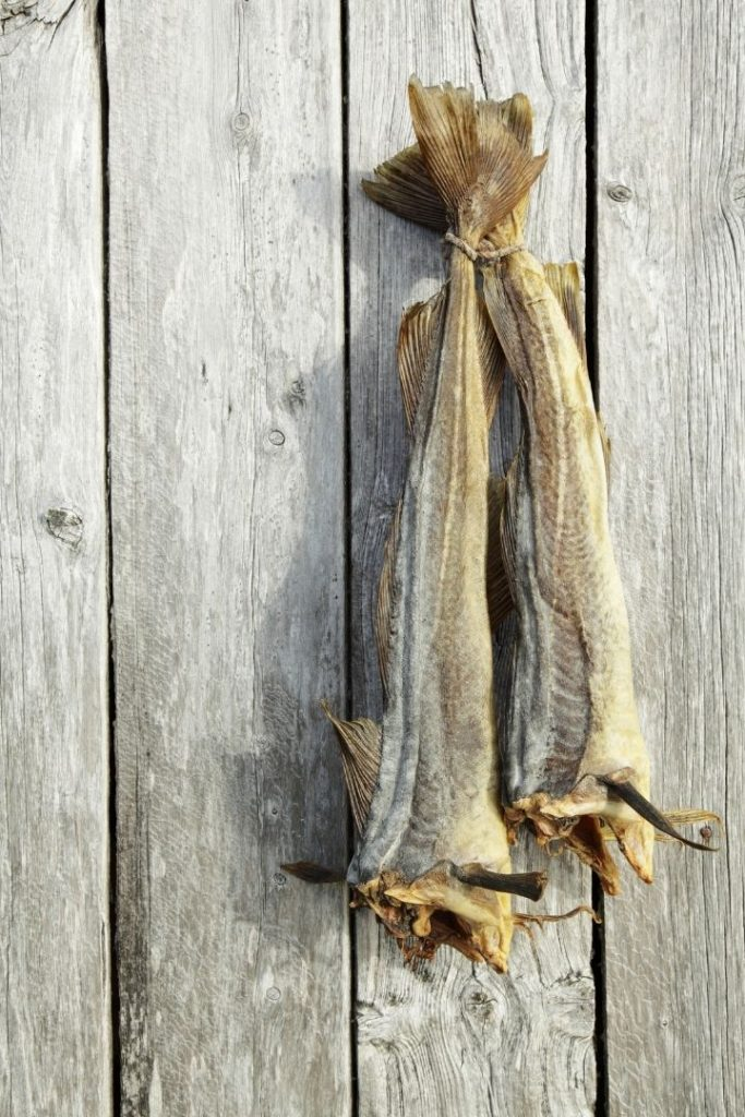 A pair of dried Atlantic cod hanging on wooden wall - The Proud Italian