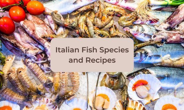 Italian Fish Species and Recipes