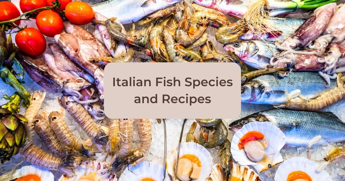Italian Fish Species and Recipes