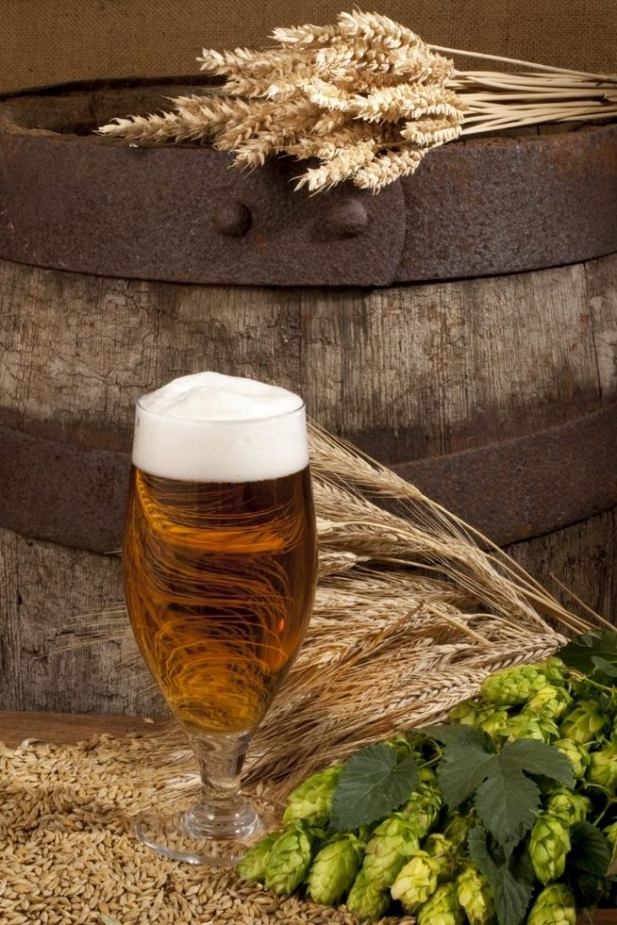 A glass of beer with barley and hops - The Proud Italian