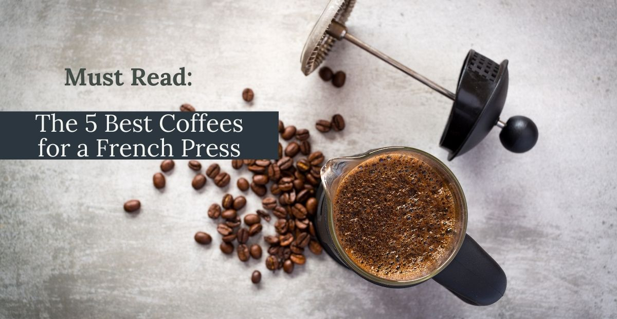 best coffees for a french press