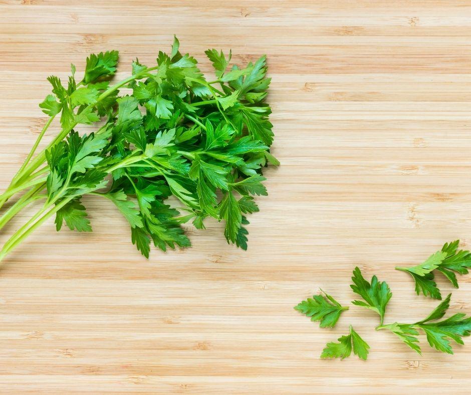 italian parsley vs parsley