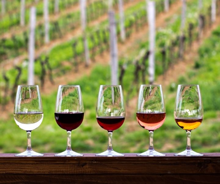 glasses of different types of wine